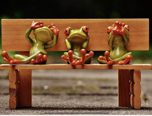 Der taube Frosch